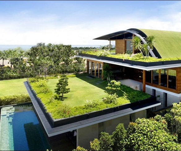 Easy Steps Towards an Eco Friendly Home