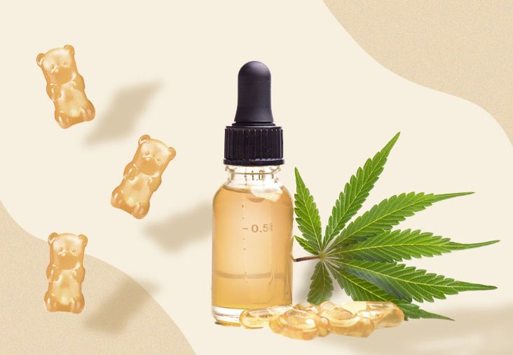 What Is the Ideal Dosage for Cinnamon-Infused CBD Oil and What Goes Into It?